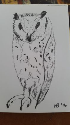Owl sketch in charcoal Owl Sketch, Charcoal, Moose Art, Drawings, Creative, Animals, Animaux, Animales, Drawing