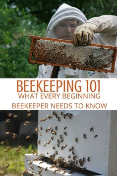 Backyard Beekeeping – what every beginning beekeeper needs to know Backyard Beekeeping – what every beginning beekeeper needs to know,Bee Keeping Wondering how to start beekeeping? Bees are a wonderful addition to the backyard. How To Start Beekeeping, Beekeeping For Beginners, Gardening For Beginners, Backyard Beekeeping, Save The Bees, How To Keep Bees, Beekeeping Supplies, Bee Happy, Gardens
