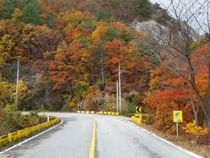 #Misiryeong Yetgil (Old road), #Sokcho, Korea | 미시령 옛길