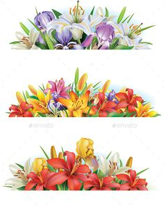Set banners with flowers. Zip contains: 1 JPEG file high resolution. 1EPSfile.