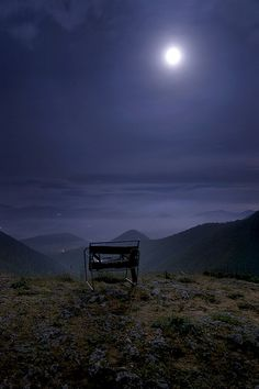 sit here to reflect upon life♥