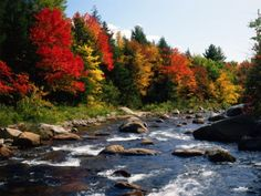 Herbststimmung am Ellis River in den Black Mountains (US-Bundesstaat New Hampshire). New Hampshire, Autumn, Seasons, Water, Outdoor, Travel Report, Seasons Of The Year, World, Vacation