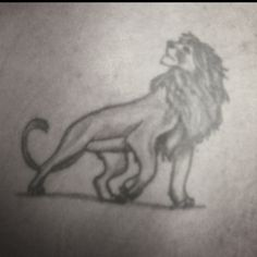 Robert insisted that I post a picture of his Simba tattoo :)