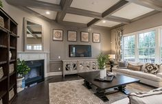 Transitional Living Room with Carpet, Crown molding, metal fireplace, Box ceiling, High ceiling, Hardwood floors