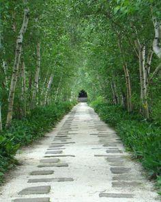 permeable path