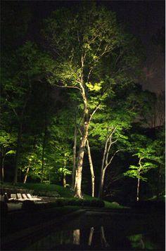 Os tipos de iluminação para o paisagismo