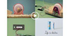 Life is Electric/Panasonicカンヌライオンズ2016のデザイン部門のグランプリに、パナソニック「Life is electric」が選出された。制作は電通。    画像をクリックするとCreativityのサイ...