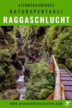 In der Raggaschlucht in Österreich trifft wildes Wasser auf Gestein und bahnt sich seinen Weg. Atemberaubende Wasserfälle werden zu einem Naturspektakel in Flattach im Kärntner Mölltal, sodass das Mund vor lauter Staunen offen bleibt! Die ultimativen Tipps zu Wasserfälle in Österreich findet ihr auf unserer Homepage #urlaubinösterreich #urlaubinkärnten #wanderninösterreich #wasserfall #raggaschlucht #hike Railroad Tracks, Garden Tools, Blog, Ski Trips, Yard Tools, Blogging, Outdoor Power Equipment