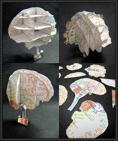 Science Paper Model - Brain Atlas Free Paper Craft Download   PaperCraftSquare.com