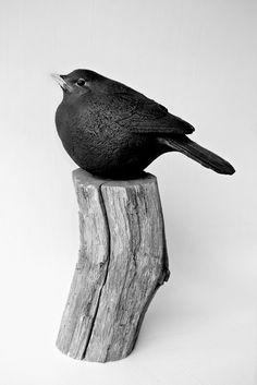 'Blackbird' by Simon Griffiths