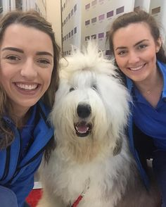 The WLR FM Street Team were lucky enough to meet the Dulux Dog today at Flynn's Hardware Dungarvan. #Flynnshardware #Dungarvan #WLRFM