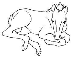 ausmalbild pferde 775 Malvorlage Alle Ausmalbilder Kostenlos, ausmalbild pferde Zum Ausdrucken