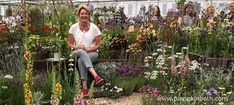 Anne Godfrey and Daisy Roots Nursery celebrate at RHS Chelsea Flower Show 2018 - Pumpkin Beth Chelsea Flower Show 2018, Hardy Perennials, Buy Plants, Drought Tolerant Plants, Garden Show, Ornamental Grasses, Roots, Daisy, Designers