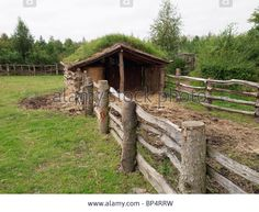 A Replica Cattle Shed With A Turf Roof On The Farm At The Museum Of Stock Photo, Picture And Royalty Free Image. Pic. 30839309