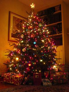 decorated multicolored christmas tree themes pictures | Christmas tree is the most classic symbol of this season. Stringing ...