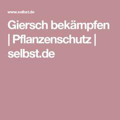 Giersch bekämpfen | Pflanzenschutz | selbst.de
