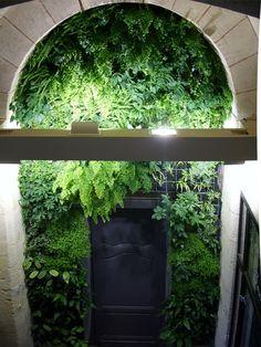 mur_vegetal_bourg_2