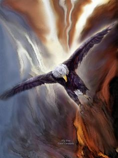 Let freedom fly, strong and proud. This painting of a bald eagle in flight with an American Flag in the background, is from the Patriotic Collection of art by Carol Cavalaris. Design is also available without the flag. Patriotic Pictures, Eagle Pictures, Eagle Images, American Symbols, American Flag, American Pride, American Spirit, American History, Eagle In Flight