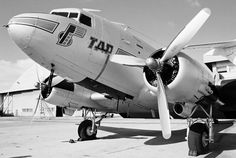 TAP air Portugal DC3 Portugal, World Pictures, Bus, Vintage Travel Posters, Lisbon, Portuguese, Old Photos, Air Force, Aviation
