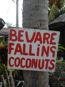 My Samoan Seduction Coconuts, Lanai, Vintage Photos, Places To See, Tiki Tiki, Island, Birth, Mom