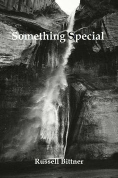 Something Special (Stories in the Key of C. Minor.) by Russell Bittner, http://www.amazon.com/dp/B00B03Z678/ref=cm_sw_r_pi_dp_ajMGsb0BTCWC5