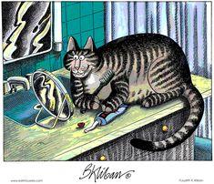 Kliban's Cats Comic Strip, April 12, 2012 on GoComics.com