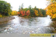 Saco River em Conway  #NewHampshire #NovaInglaterra #NewEngland #WhiteMountains #EUA #USA #EstadosUnidos #Viagem #Kancamagus #MauOscar #Outono #Fall #Foliage #Conway