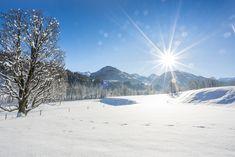 Wachen Sie mit diesem wunderschönen Blick im Landhaus Blaufeld auf. Villa, Felder, Mountains, Nature, Travel, Patio, Green Life, Penthouse Apartment, Real Estate Agents