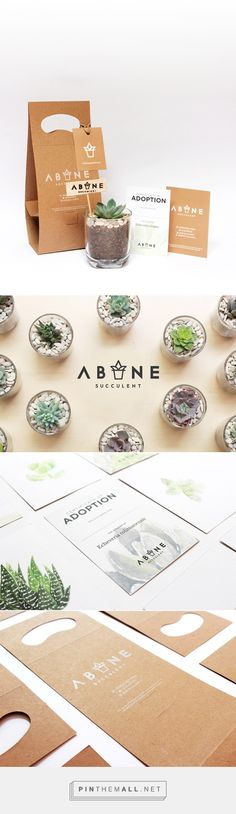 ABANE Succulent Visual Branding by Nevi Ayu Enviarni. Source: Daily Package Design Inspiration. Pin curated by #SFields99 #packaging #design #inspiration #ideas #creative #product #innovation #plants #succulents #cardboard