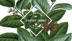 Botanical graphics design