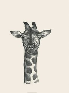 Animal + shows animals on computers and phones that are currently the hottest application. animal collection for applications that help you add Animals Images, Animal Pictures, Flashcards For Kids, Animal Cards, Stuffed Animals, Tao, Giraffe, Whale, Moose Art