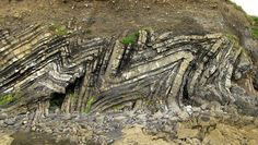 M - parasitic folds in the hinge of a W -verging anticline. Loughshinny (15 Km North of Sublin), Ireland. Folded Strata are Carboniferous flysch (turbidite) deposits deformed by the Hercynian Orogeny. #ScienzeGeologichePage