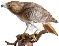 The Wooden Wing Studio, artist Robert Goodwin, creates custom wood carvings and bird wood carvings for sale. Visit the site for owl sculptures, driftwood sculptures and bird carvings galore.