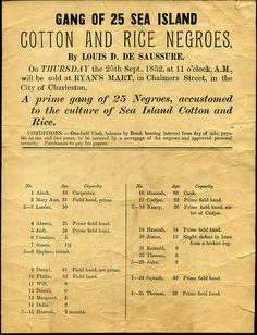Gang of 25 Sea Island Cotton and Rice Negroes [title taken from document]. Broadside advertising the sale of African-American slaves in Charleston, SC, 1852.