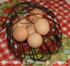Thinking of selling eggs? What to know before you do!