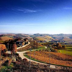 Il Paesaggio vitivinicolo del Piemonte in Autunno: Langhe-Roero e Monferrato, sito UNESCO dal 2014. The Vineyard Landscape of Piedmont in Autumn: Langhe-Roero and Monferrato, UNESCO site since 2014. #FoliageInItaly #Italia #Italy #IlikeItaly #autumn #autunno #foliage #Piemonte #leaves
