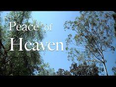 Peace of Heaven ( Live Piano Violin Worship Prayer Prophetic Soaking Music )