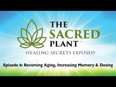 """Welcome to the first episode of the eye-opening documentary series """"The Sacred Plant: Healing Secrets Exposed"""". This episode is entitled: The Sacred Plant. Holistic Healing, Natural Healing, Sacred Plant, Endocannabinoid System, Traumatic Brain Injury, Multiple Sclerosis, The Victim, Cancer Treatment, Health"""