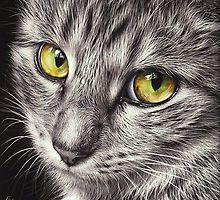 Katzenliebhaber datieren Website australia
