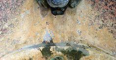 Ideas para crear fuentes de piedra y otros adornos con agua para el jardín