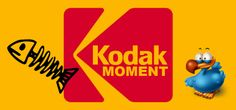 Kodak Moment: Digital Photography Will Never Take Off Kodak Moment, Digital Photography, Content Marketing, In This Moment, Business, Movie Posters, Film Poster, Store, Inbound Marketing