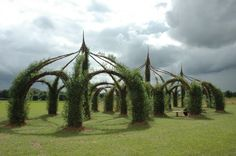 Willow cathedral | Rusty's Earthplay blog. Isn't this fantastic?! Crafted from natural living willow, and there's information in the blog post about how constructions like these are grown. Pinned by Alec from http://childsplaymusic.com.au/