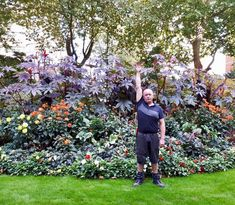 This is one of our clients bedding displays in London. They have used a combination of our Dahlias and Ricinus to create this stunning summer display. These Ricinus have grown particularly well  in this sheltered spot! #london #garden #gardendesign #landscaper #creative #dahlia #ricinus #flowers #flower #plants #plantbased #horticulture #nature #instagood #instadaily #instagramers #england #englishhome #home #gardening #buckinghamshire #hertfordshire #england