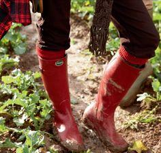Boots Le Chameau.