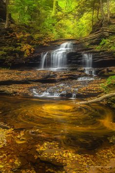 """Autumn Swirling Blend - Visited Ricketts Glen State Park, PA that have 22 waterfalls.  This is the first one we visited.  Having a fun to create """"Swirling Effects"""" at the first waterfall.  It's hard to move next waterfall!  LOL"""