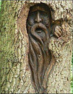 Tree Carving of a wood spirit Más Land Art, Tree Faces, Tree Carving, Green Man, Wood Sculpture, Metal Sculptures, Abstract Sculpture, Bronze Sculpture, Tree Art