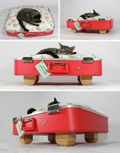 So doing this for my next kitty, who will be named Fluffy Butt be it boy or girl! Upcycled Suitcase Pet Bed