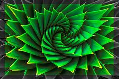 Natural patterns by Kiwi Mikex, via Flickr