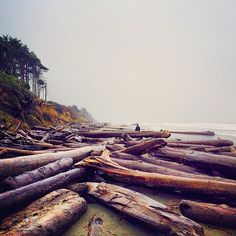 Olympic National Park, Washington | 24 Awe-Inspiring National Parks That Will Make You Want To Grab Your Hiking Boots