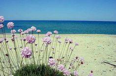 El lugar de mi corazón. .Piscinas Sardegna - Cerdeña